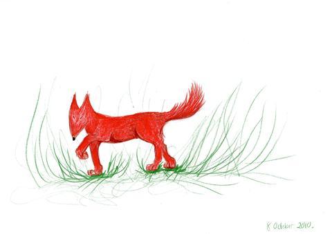 fox walking_480x339