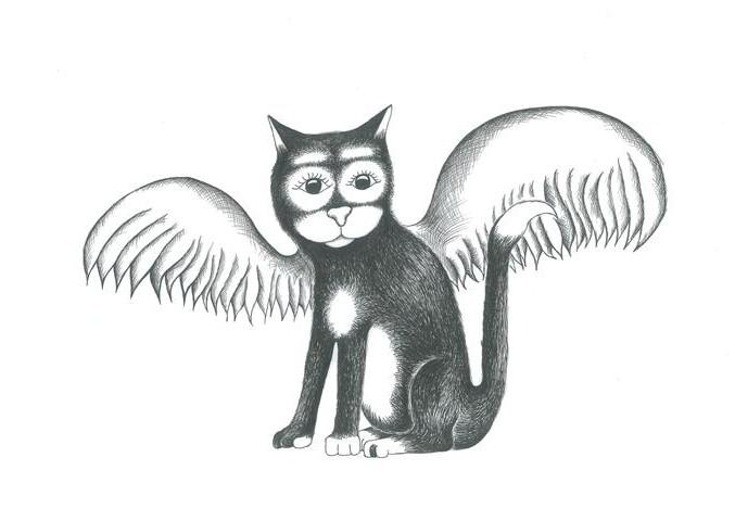 owl cat _480x677